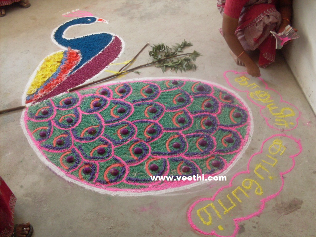 Rangoli Designs For Competition With Concepts Peacock rangoli
