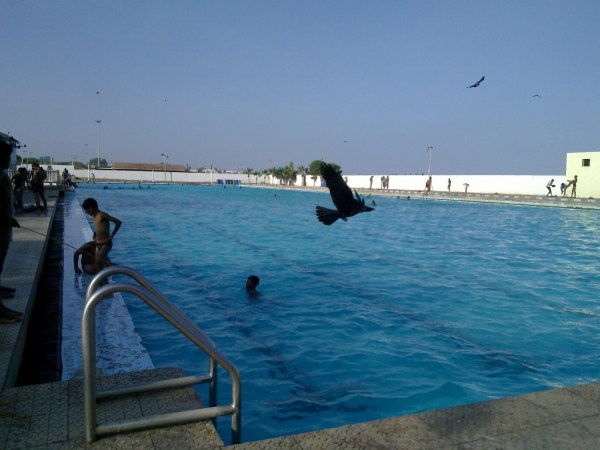 Anna swimming pool chennai marina beach veethi for Beach resort in chennai with swimming pool
