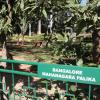 Bangalore, The Garden City