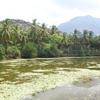 Padmanabhapuram Lake view