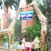 Way to Kanyakumari district Mathur Kids park near Nagercoil