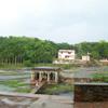 Nagercoil Thiruparappu waterfalls