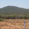 Mountains view at Vallanadu in Tuticorin district