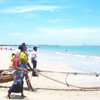 A fishing net is being pulled by a Fishermen at Tuticorin beach