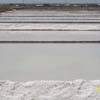 Salt producing area at Muthu Nagar in Tuticorin district