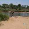 People taking bath in Thamirabarani river at Tirunelveli