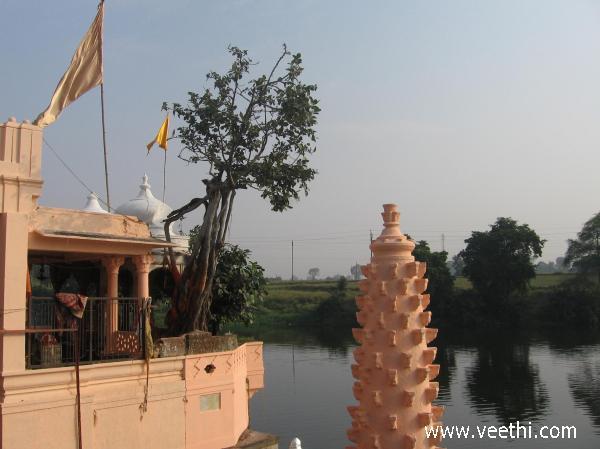 Arandia Photos