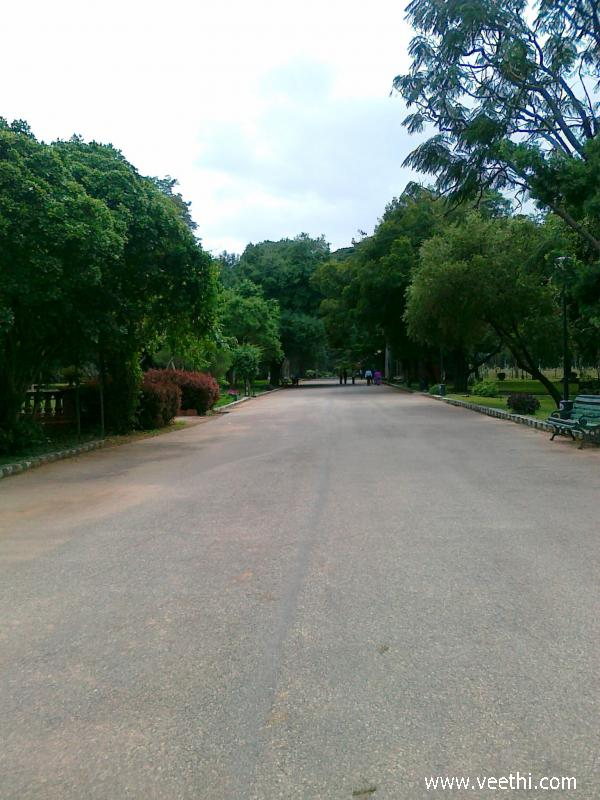 road-in-lal-bagh