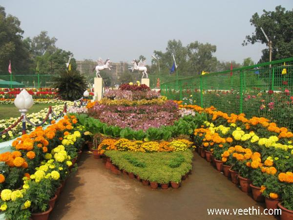 flowers-exhibition-in-baradih-jharkhand