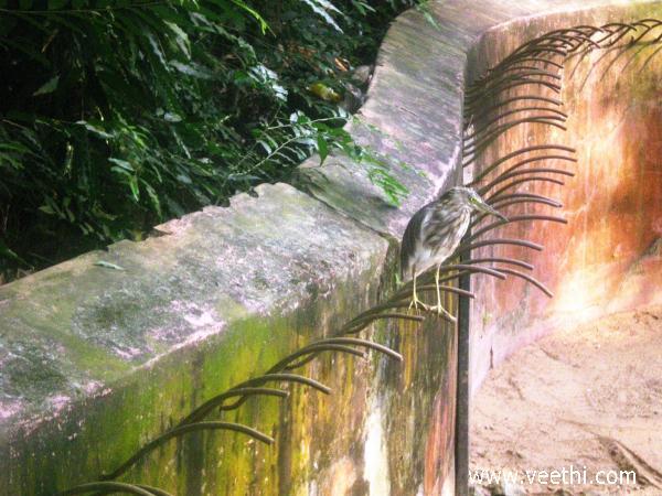 Bhubaneswar Photos