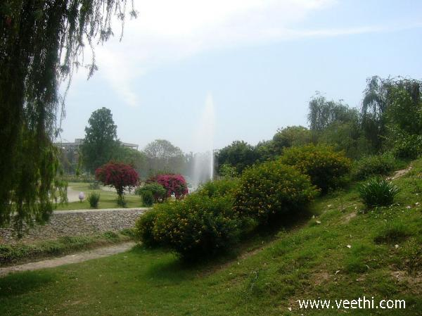 Chandigarh Photos