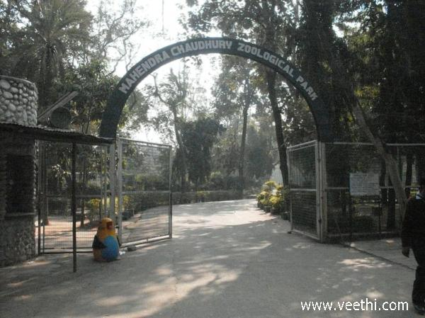 the-entrance-to-the-mahendra-chaudhaury-zoological-park-chandigarh