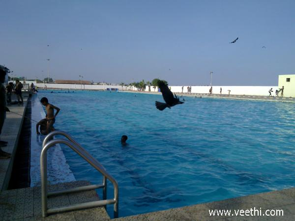 Anna Swimming Pool Chennai Marina Beach Veethi