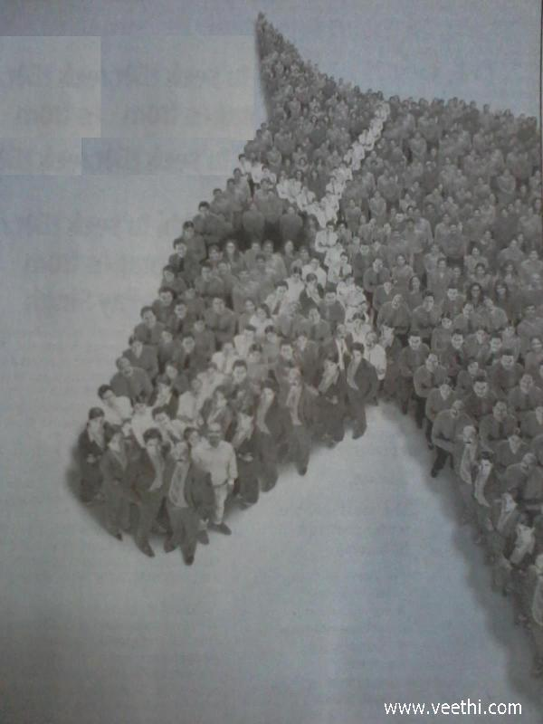donkey-shape-formed-by-people-standing-together