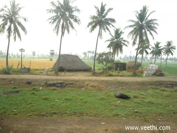 Chennai Photos