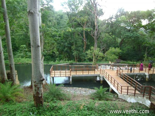 scene-from-courtallam-ecopark