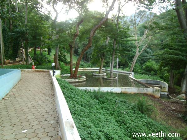 greenery-in-courtallam-ecopark