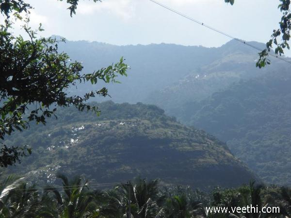the-hills-of-courtallam