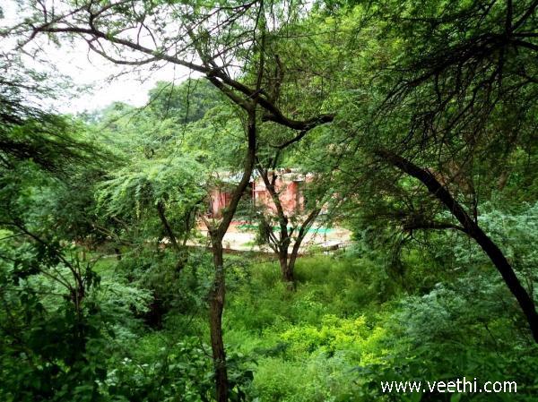 Hastinapur Photos