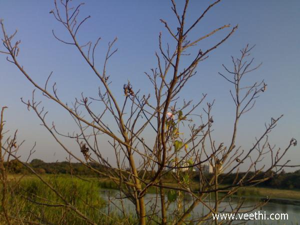 Hyderabad Photos
