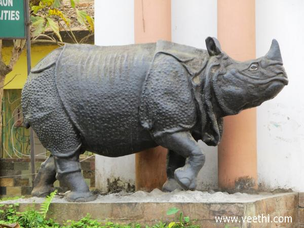 statue-of-rynocerosassam
