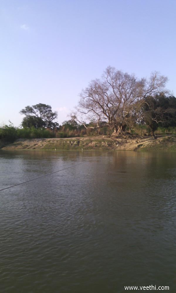 a-pond-at-kota-in-sultanpur