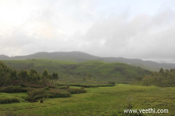 Munnar Photos