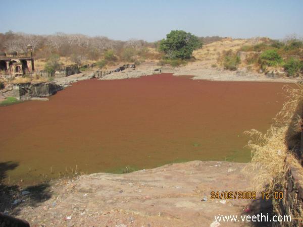 Ranthambore Photos