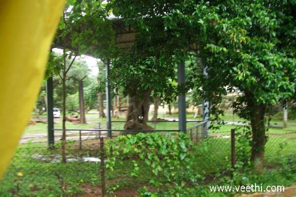 Santiniketan Photos