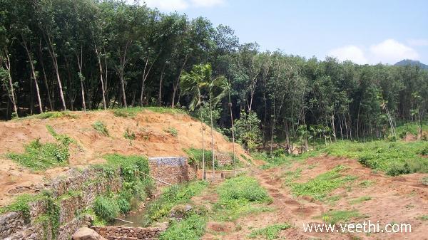 Thirparappu Photos